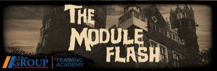 The Module Flash, Halloween, The Group Training