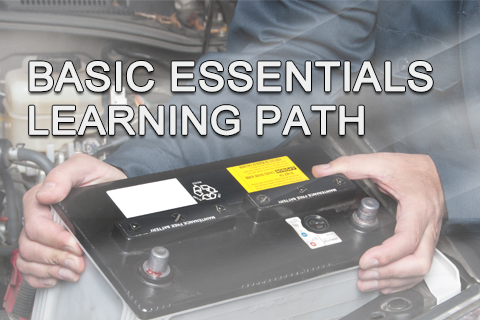 Basic Essentials Learning Path Bundle