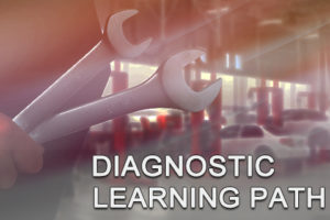 Diagnostic Learning Path Bundle