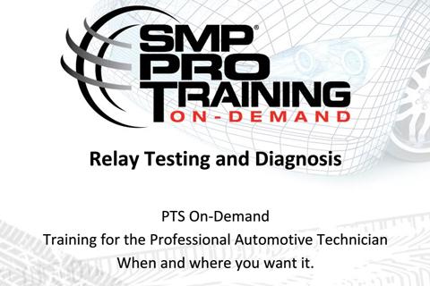 SMP-17 Relay Testing and Diagnosis Fundamentals